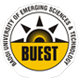 Baddi University of Emerging Sciences and Technology Logo in jpg, png, gif format
